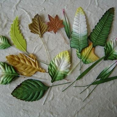 Mulberry Paper Bladeren