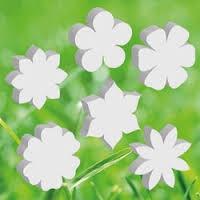Piepschuim Bloemen | Planten