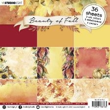 Studio Light Beauty of Fall