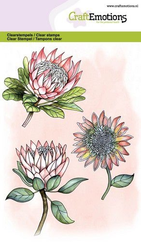 CraftEmotions clearstamps A6 - Protea 3 bloemen