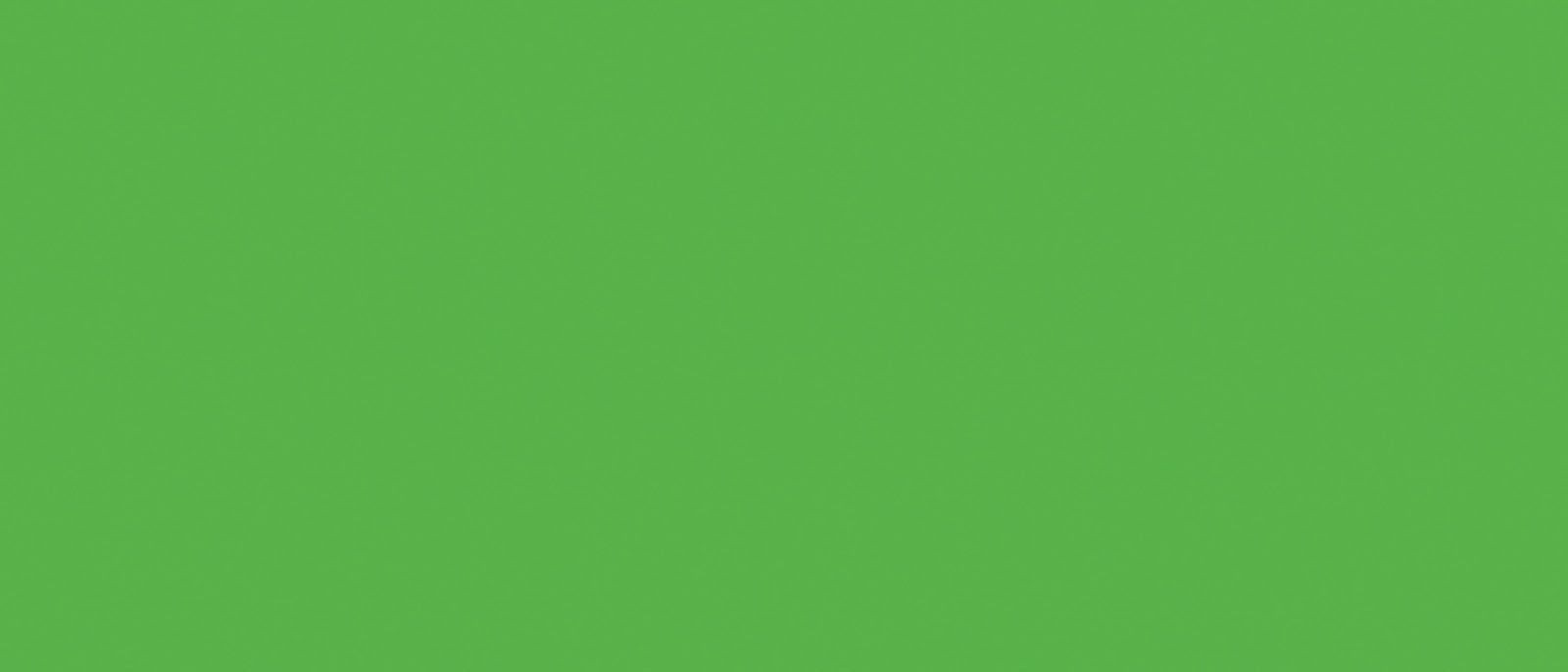 Radiant Neon Electric Green Ink Pad