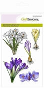 CraftEmotions clearstamps A6 - Crocussen