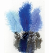 Marabou & Guinea Fowl mix Boy
