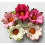 Mulberry Paper Chrysanthum - Chrysant Pink / Wit