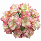 Mulberry Paper Gardenia - 2 tone Champ. Pink-Ivory  | 6cm