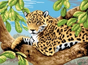 Painting by Numbers Leopard in Tree | A3 formaat