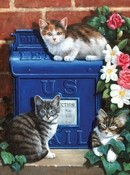 Painting by Numbers Mailbox Kittens | A4 formaat