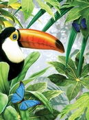 Painting by Numbers Tucan in jungle | A4 formaat